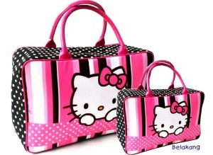 hk vertikal pink 300x219 Travel Bag Tenteng